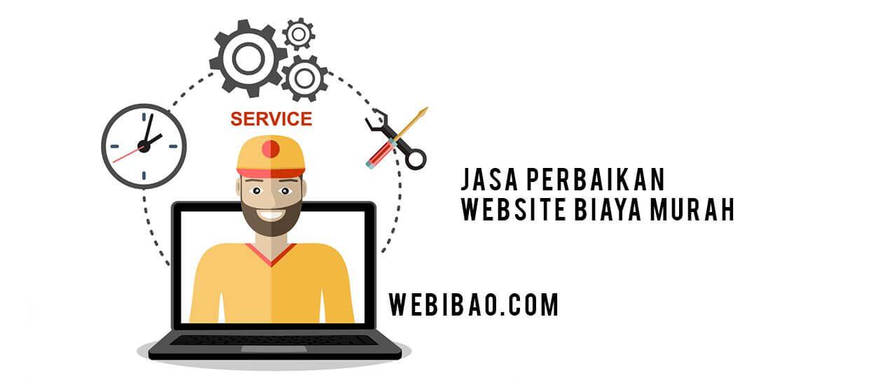 jasa perbaikan website error
